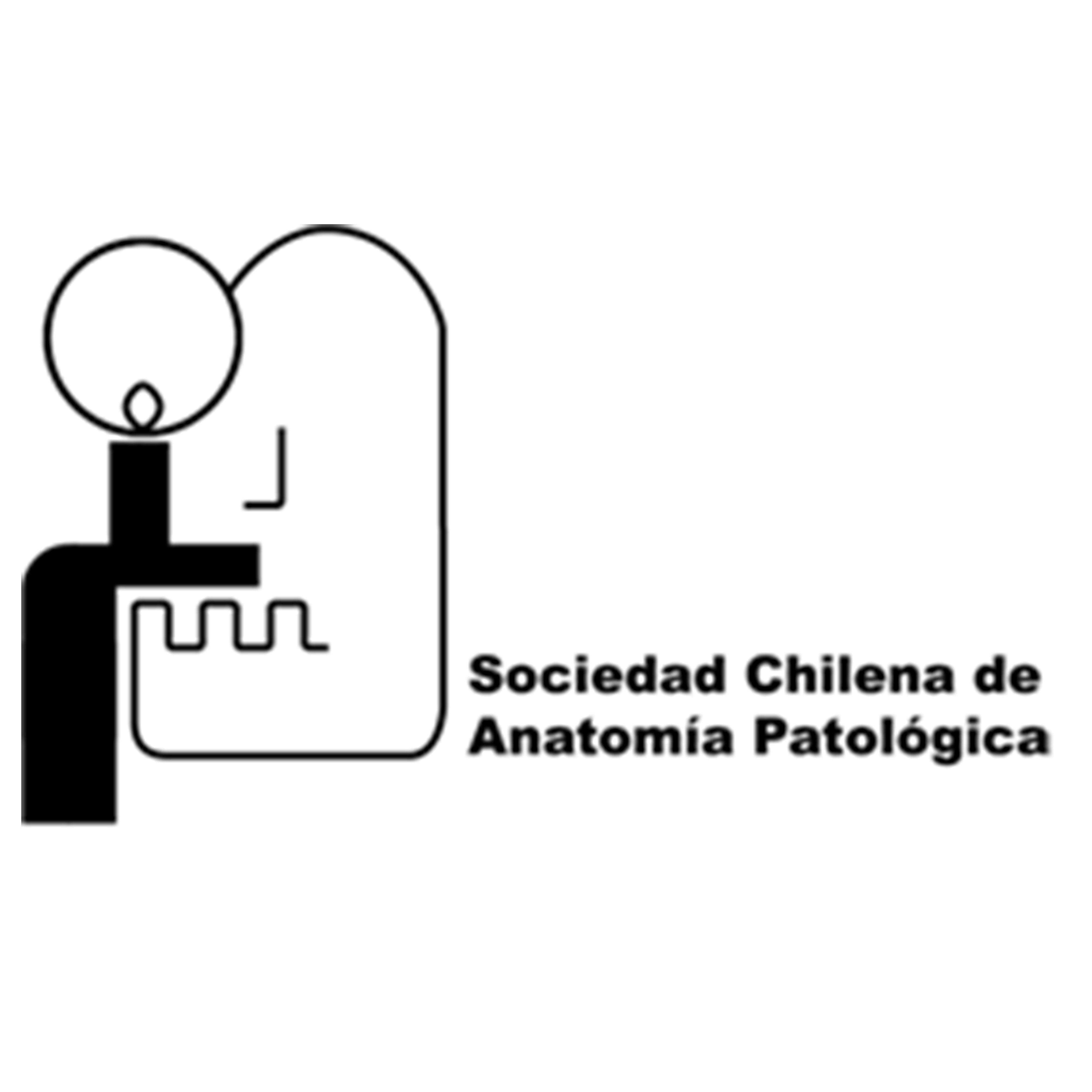 Logo-SCHAP